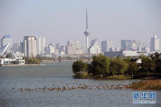 这是江苏徐州城市一角(2012年11月11日摄)。新华社记者韩瑜庆摄