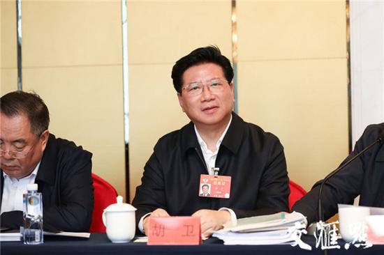 全国政协委员、民进上海市委专职副主委胡卫