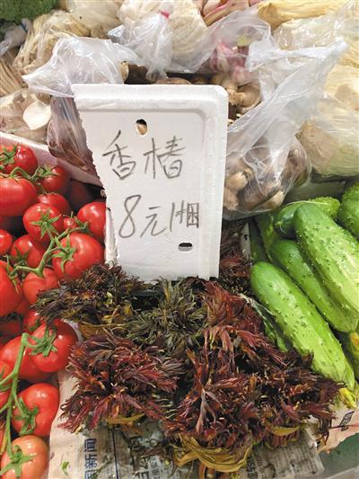 顺义区鑫绿都中菜联盟菜市场,香椿价格为8元一捆。新京报记者 杨亦静 摄
