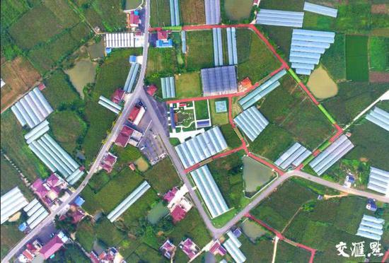 从空中俯瞰位于句容茅山镇境内的乡村道路,彩色的道路连接田野、串联乡村。(辛一 摄 视觉江苏网供图)