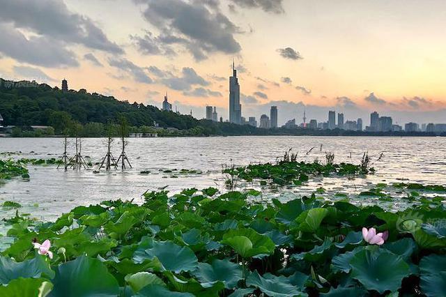 南京苏州上榜国庆假期国内十大热门旅游城市