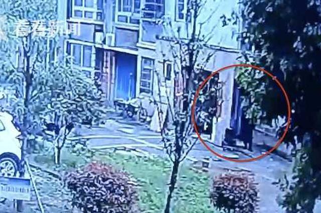获刑3年!男子高空抛单车 致78岁老人被砸身亡