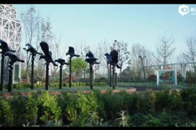 展园巡礼 | 荷兰布雷达展园:游走在梵高童年记忆里的风景