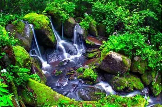 兰家大峡谷图片_汪清 一个隐藏在小县城的绿野仙踪!_新浪吉林_新浪网