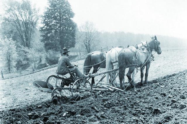 长春市农业机械化的发展历程 从牛马犁杖到机械化