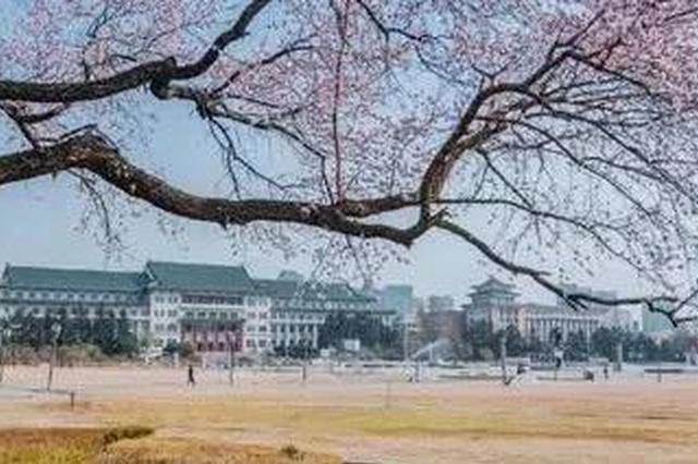 长春文化广场种点啥?听听景观工程师怎么说