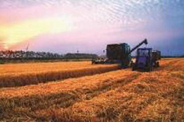 吉林市推进现代农业高质量发展