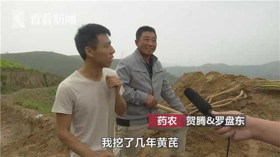 """长5米重9公斤!药农意外发现野生""""黄芪王"""""""