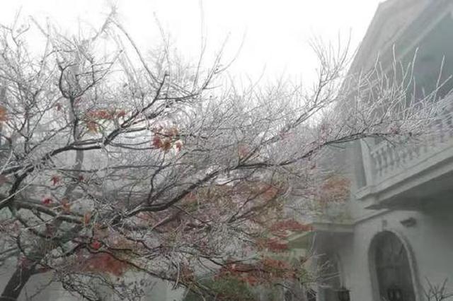 九江庐山现入冬首场雨凇景观
