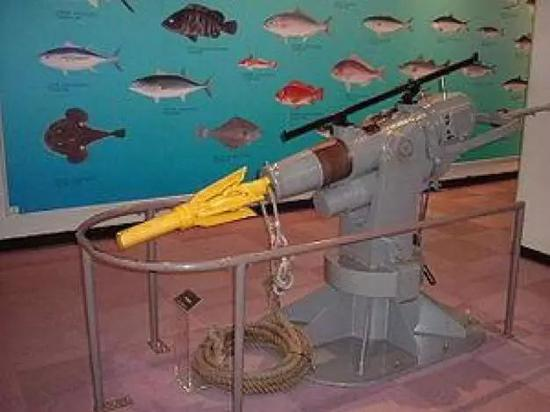 (图为捕鲸炮模型)
