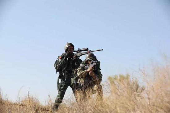 小组协作狙击