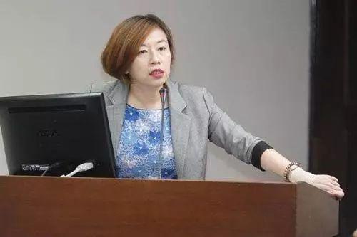 ▲蔡英文竞选办公室说话人林静仪(原料图)