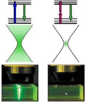单光子(共聚焦)激发与双光子激发(图片来源:网络)