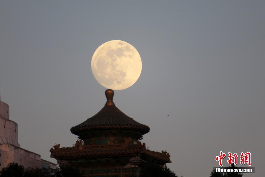 半中国留学北京汲取面只吃四口门特区政府 章子怡