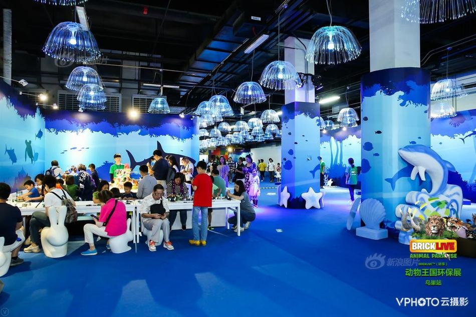 而退香港首次公東香港淘金為何選在中12微信