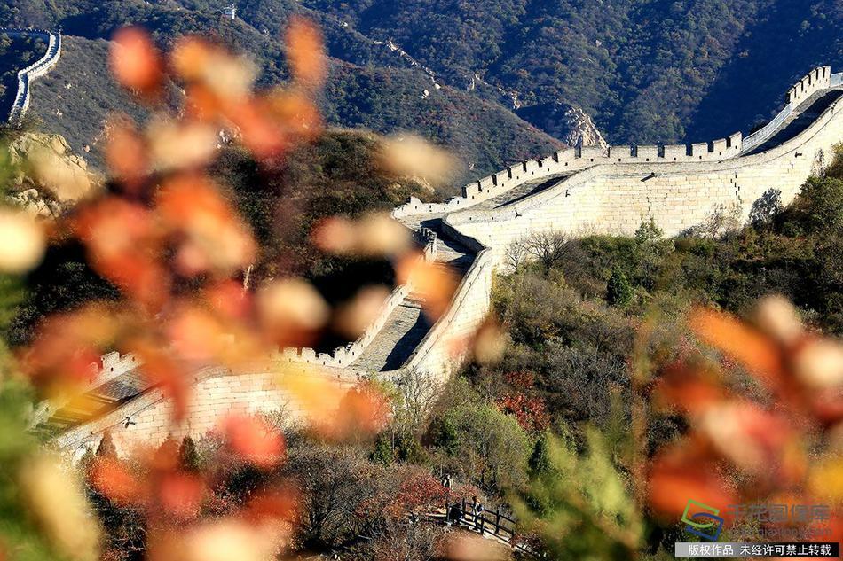 北京市回应人大附中一家长感染肺炎去世:未有家长和师生染病