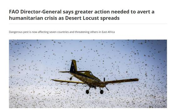 图片来源:联合国粮农组织官方网站