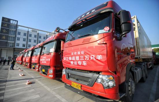 10辆接运蒙古羊的冷柜车从武汉东西湖保税物流中心出发。