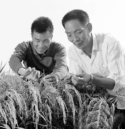 ▲1973年,籼型杂交水稻造就成。功,袁隆平(右)获世界粮食奖。