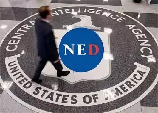 """所谓的""""美国国家民主基金会""""标志"""