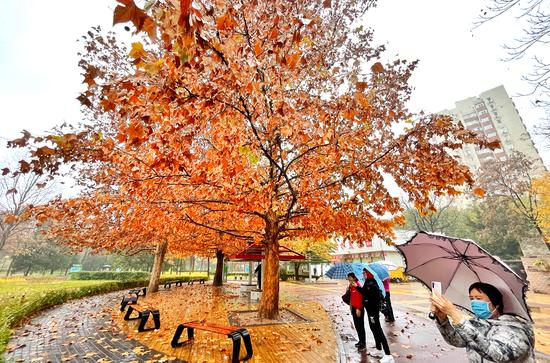 """美丽""""冻""""人:一起来看冬雨中的北京城和人"""
