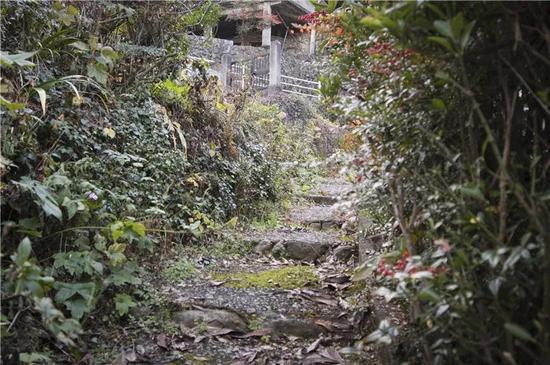 """图为鸠之巢车站和""""青年定住声援住宅""""之间的巷子。"""