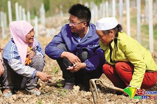 大学生村官翁新强指导农民种植五味子。材料图