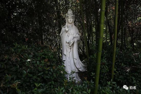 ▲别墅门前,一尊汉白玉观音像矗立在植被中。