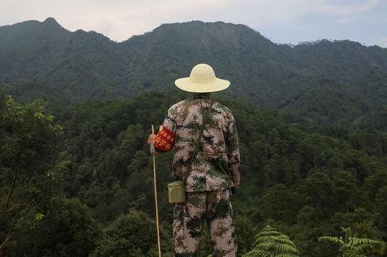 ▷从伐木工转为护林员的王彬看着本身巡护的山林,这边曾是一片荒山秃岭