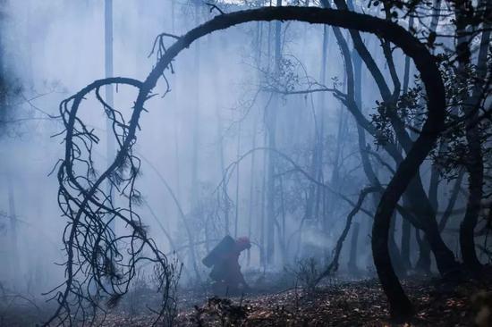 △2017年3月19日,四川凉山木里,森林中扑灭大火的消防员。