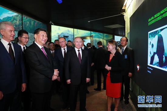 6月5日,国家主席习近平在莫斯科克里姆林宫同俄罗斯总统普京会谈。这是会谈后,两国元首共同出席莫斯科动物园熊猫馆开馆仪式。 新华社记者 丁林 摄