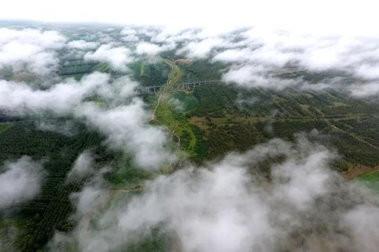 俯瞰山西省右玉县右卫镇一景(7月22日摄)。新华社记者 詹彦 摄