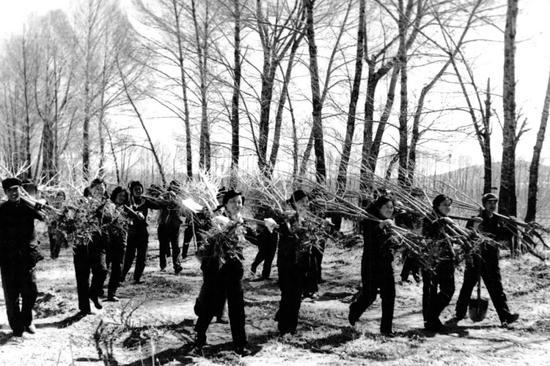 20世纪六七十年代,右玉县群众在荒山植树(翻拍照片)。新华社发
