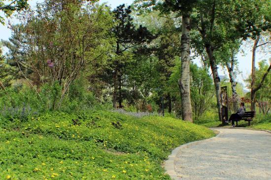 △广阳谷是北京市建成的第一片城市森林,与天安门直线距离只有3公里。