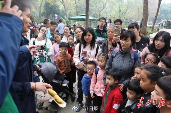 工作人员在向游客科普与大熊猫粪便有关的知识 武汉动物园供图 下同