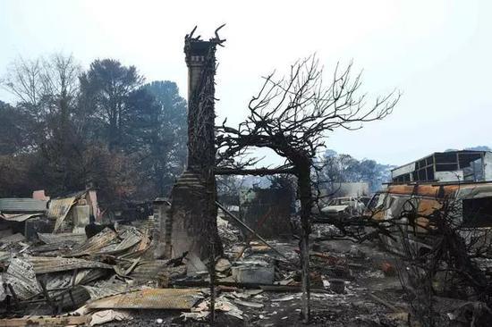 探访林火过后的村庄。新华社供图