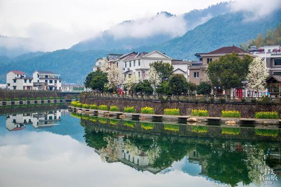 △青山绿水环抱中的下姜村,宛如世外桃源。