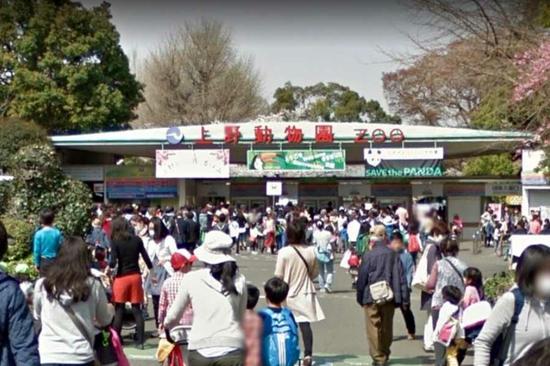 上野动物园门口(推特截图)