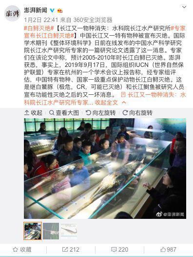 澎湃新闻报道截图