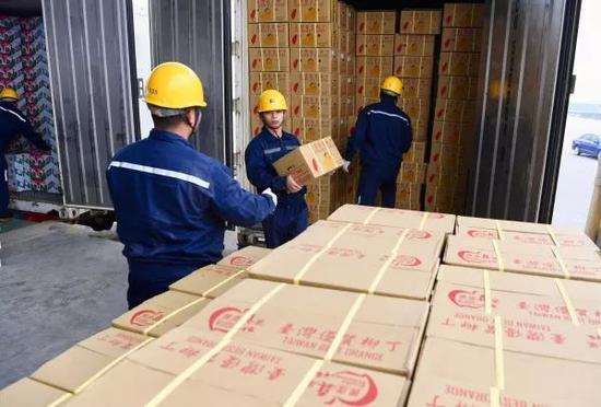 ▲资料图片:1月20日,福建平潭港区工作人员在搬运刚刚抵达的台湾水果。(新华社)