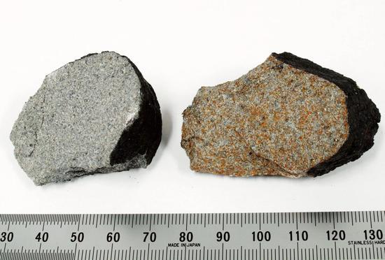 习志野市发现的陨石碎片(共同社)