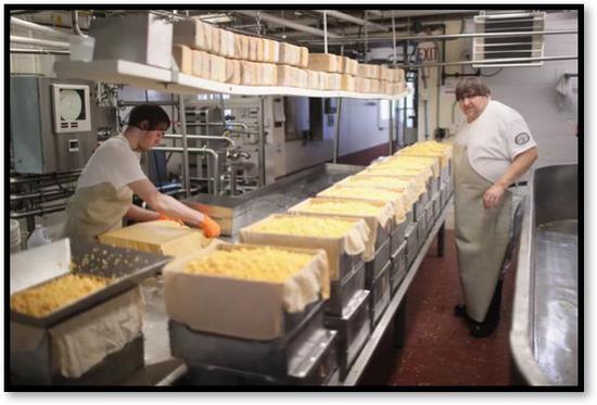 奶制品生产商制造出的大量奶酪(图源:Scott Olson/盖蒂图片社)
