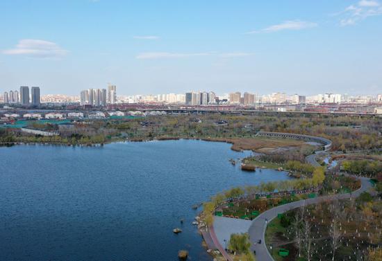 ↑位于天津市城区的水西公园风光(2020年11月19日摄,无人机照片)。南水北调中线工程有效补给了城市生产生活用水,为天津市生态补水和减少深层地下水开采创造了条件,替换出一部分引滦外调水,有效补充农业和生态环境用水,水系循环范围不断扩大。