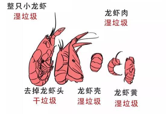 """网络流传的""""小龙虾身后事""""示意图"""