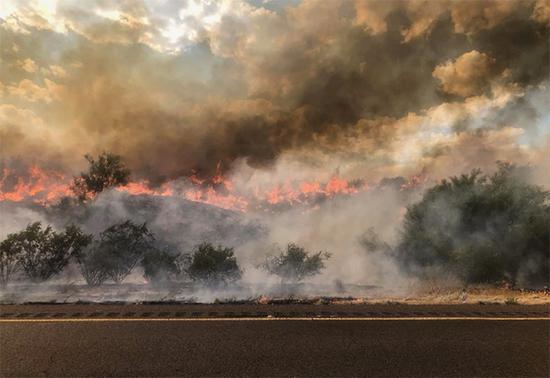 亚利桑那州山火,来源:美国农业部