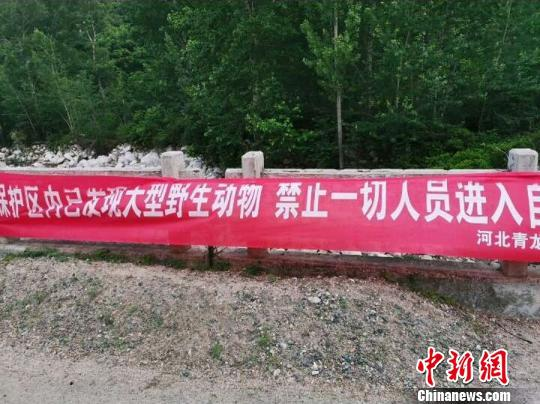 青龙满族自治县在野生动物出没区域设立醒目标志 王天译 摄