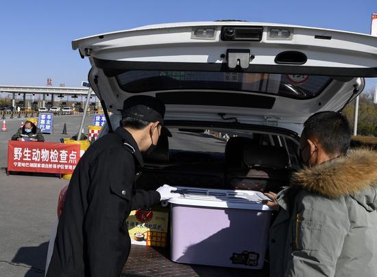 2月2日,在宁夏盐池县青银高速公路花马池出入口野生动物检查点,工作人员检查即将驶出的车辆。新华社记者 冯开华 摄