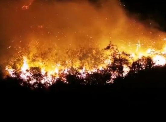 汕头南澳发生森林火灾 汕头南澳森林火灾起火原因什么