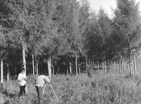 ↑林业调查队员在塞罕坝林场进行森林调查(20世纪80年代资料照片)。