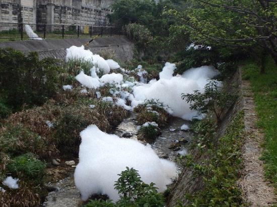 被泡沫染白的河流(原料图:日媒)